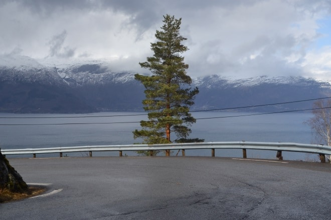 hardangerfjord-road-5