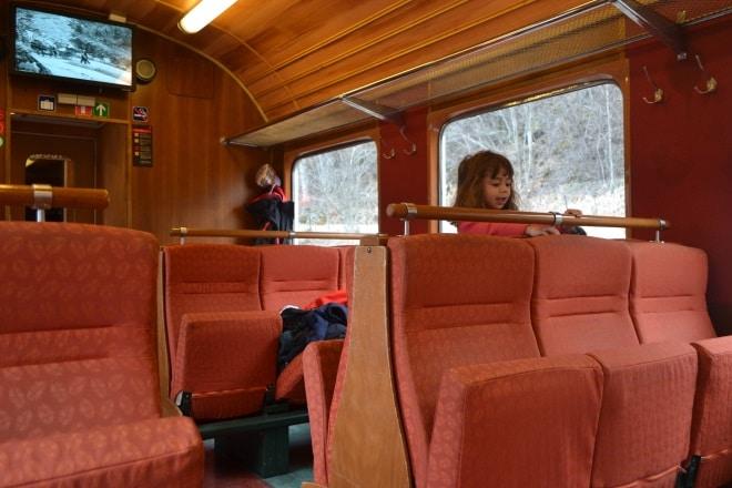 flam-railway-train