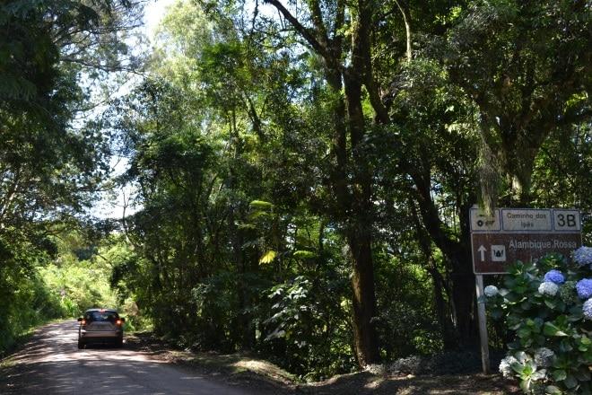 estrada-quilombo-chapadao-3