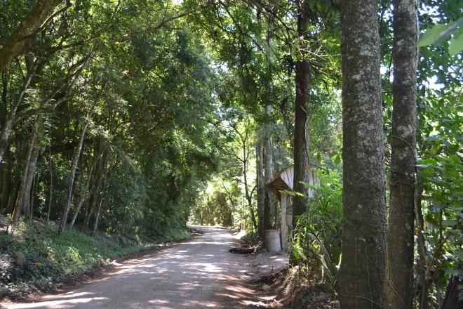 gramado-rs115-bloqueada-estrada-do-quilombo-9