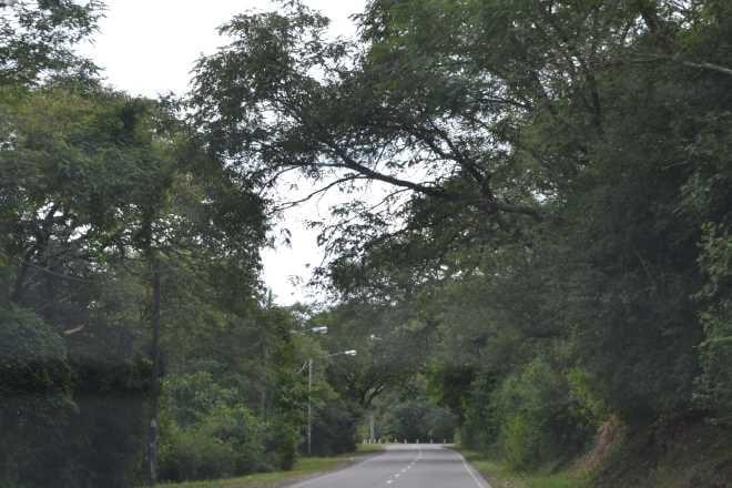 ruta-9-salta-purmamarca-2