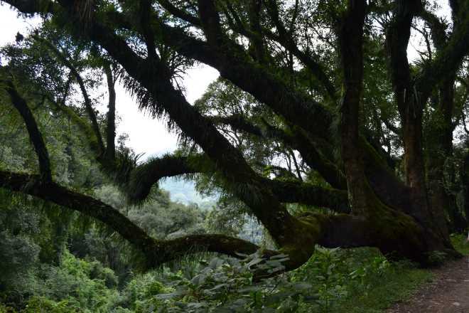 ruta-9-salta-purmamarca-4