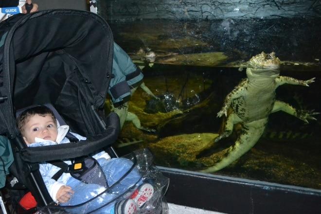 bergen-aquarium-5