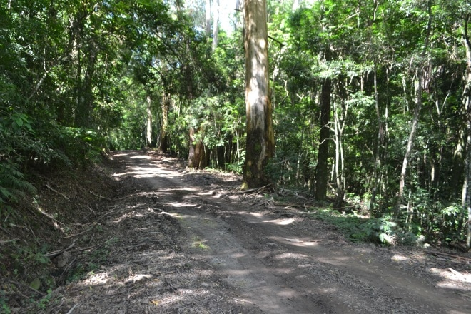 estrada-quilombo-chapadao-5