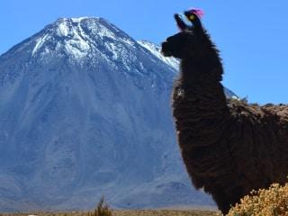 Deserto do Atacama - como chegar e como fazer os passeios
