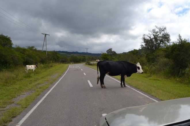 ruta-9-salta-purmamarca-3